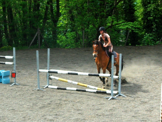 Cours Equitation Galop 7